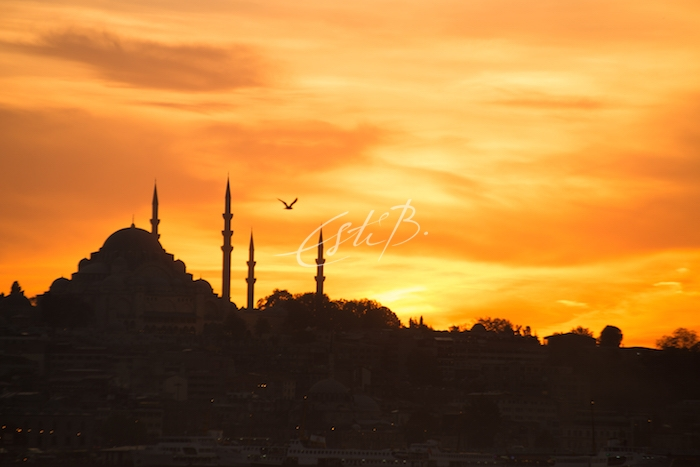 Istanbul old town skyline