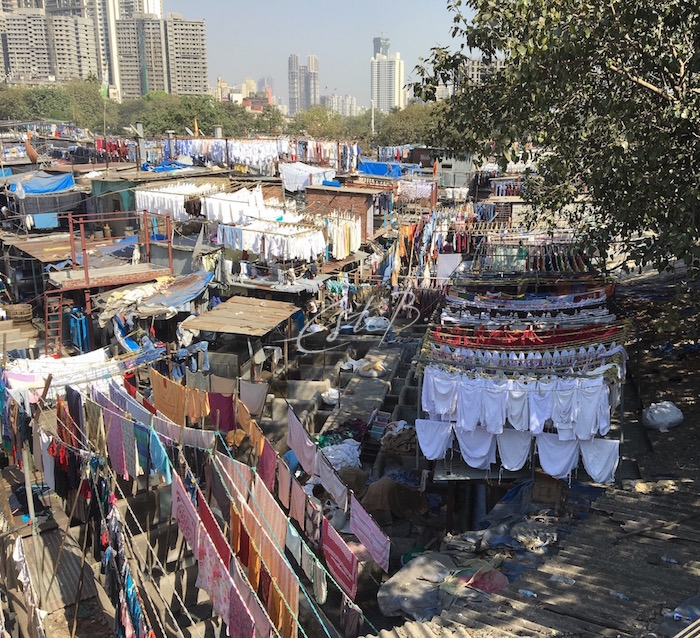 Dhobi Ghat open-air laundry