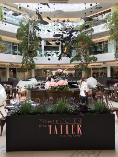 Tom's Kitchen at the Tatler Restaurant during Focus/17