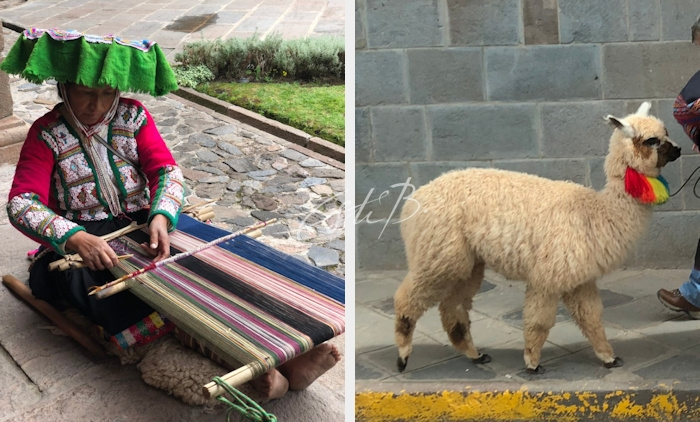 Cuzco weaver and alpaca